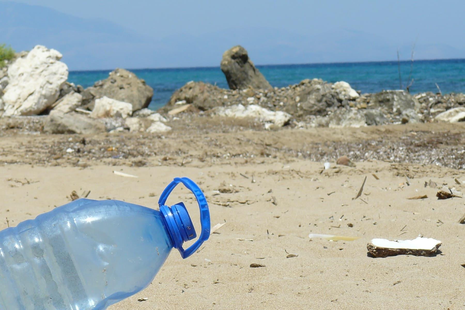 Naturbewusstseinsstudie: Deutsche wollen besseren Meeresschutz und keine Genpflanzen